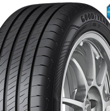 ANVELOPE VARA GOODYEAR EFFICIENT GRIP PERFORMANCE 2 195/65 R15 91H